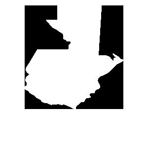 Monitoreo de conflictos
